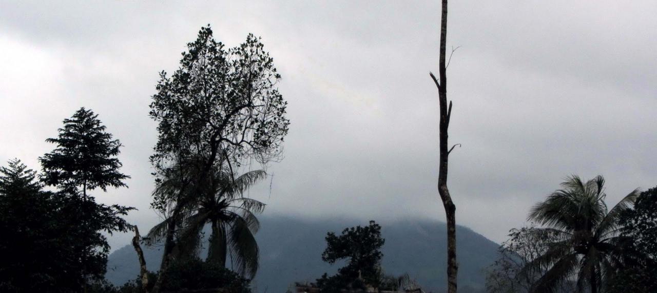 Núi Kim Phụng