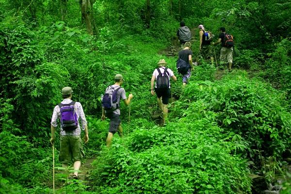 Vườn quốc gia Phú Quốc - khám phá đầy đủ cho một chuyến đi - Tago.vn