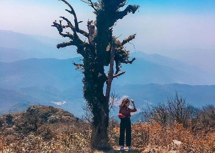 Vườn quốc gia Phia Oắc - Phia Đén - 'nàng tiên ngủ quên' trên đất Cao Bằng